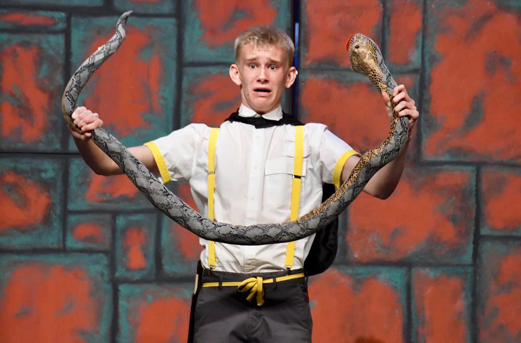 Snakes are used to represent the Slytherins in Puffs.